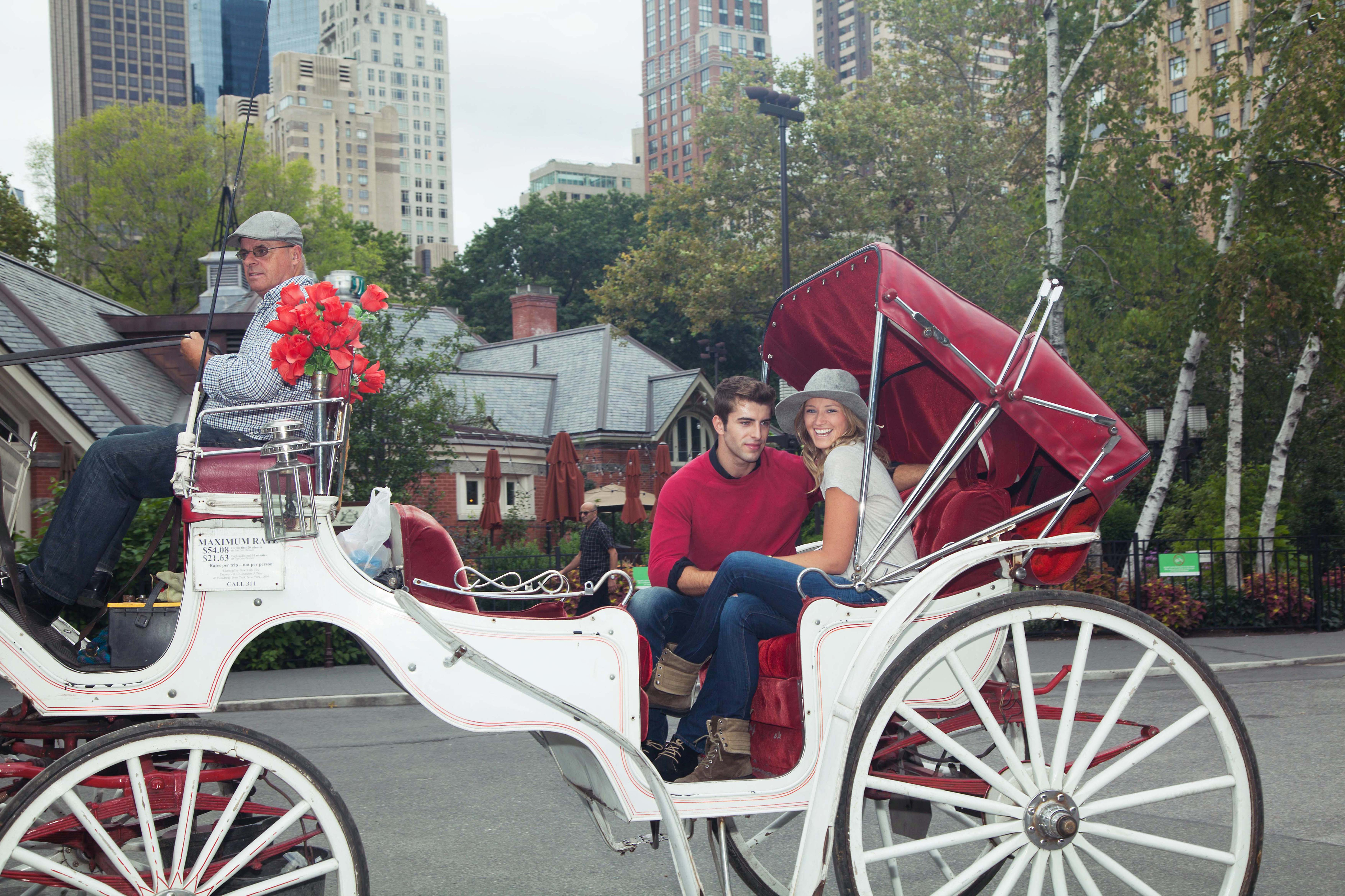 Romantic ride in a horse-drawn carriage in Central Park